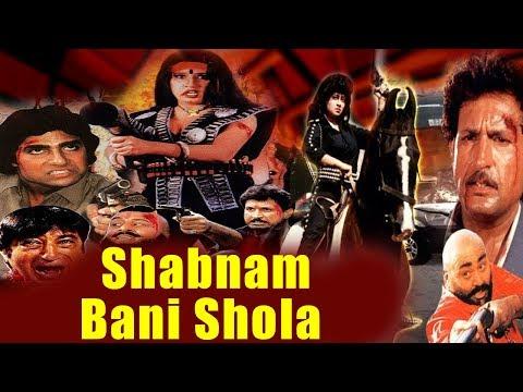 Shabnam Bani Shola (2001) Hindi Full Movie | Mohan Joshi, Satnam Kaur | New Hindi Movie