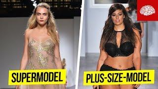 Fakten über Models