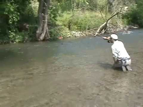 Trout fishing in central pa youtube for Pa out of state fishing license