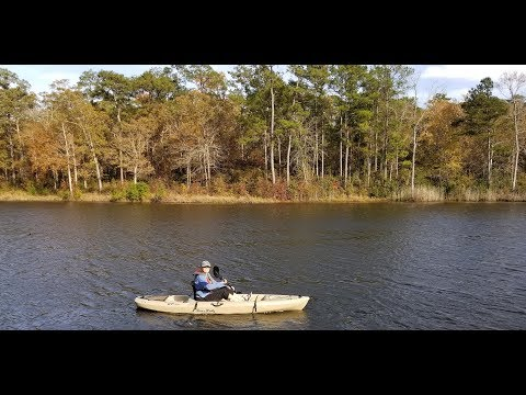 Kayaking Henderson Pond On Camp Lejeune NC