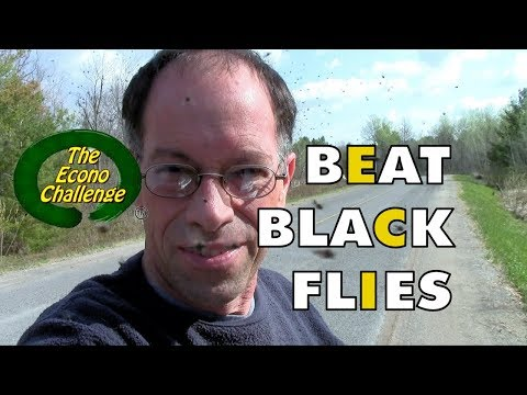 Black Fly - How To Protect Yourself In The Wilderness