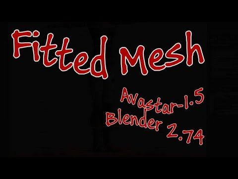 Fitted Mesh 1