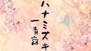 ハナミズキ/一青窈 歌詞付き  高音質フル  (cover) Hanamizuki - Yo Hitoto 他にも音楽動画を配信しています   世界に一つだけの花 / SMAP ...