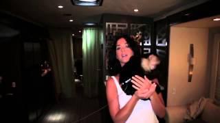 Monkey likes Katy Perry's b00bs!