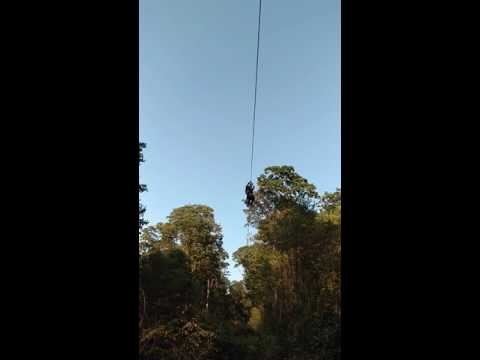 NMD zip-lining on canopy tour at West Virginia university, 9/4/16