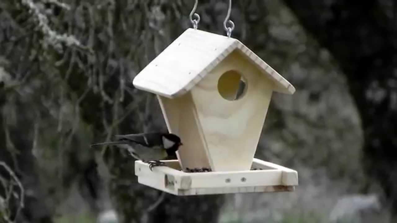 Comedero para aves modelo caba a de gardenbirds youtube - Comedero de pajaros ...