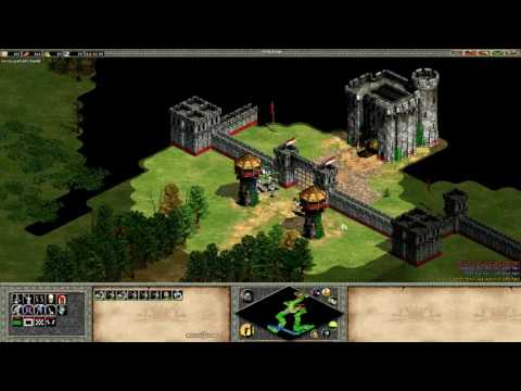 Age of Empires 2 Speedrun - Joan of Arc 3 (8:05)