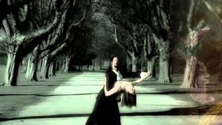 American Tango - Orchids in the Moonlight, Harry Horlick