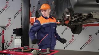 Reemplazar Brazo oscilante BMW X5: manual de taller