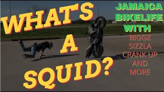 WHAT IS A SQUID? JAMAICAN BIKELIFE CHALLENGE