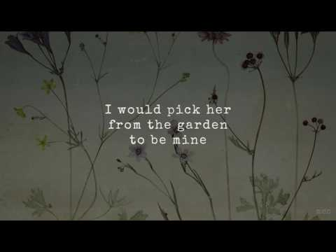 Wildflower | Skylark | Lyrics ☾☀