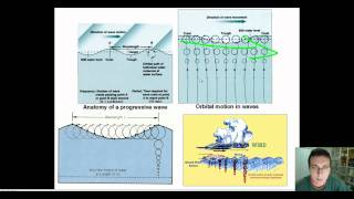 Ocean Waves (Part 1): Wave Structure & Formation