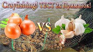 Сrayfishing-Ловля РАКОВ! Тест 2х Приманок: ЛУК Против ЧЕСНОКА!