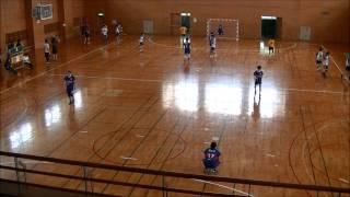 【ハンドボール試合動画】2015年 神奈川県社会人リーグ 慶丘会 VS SHC(前半)
