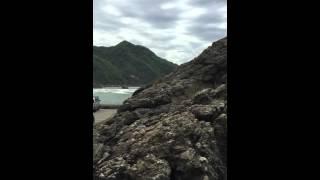 Niigata Tour Juwel Pathan