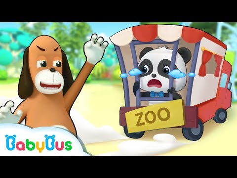 Mr.Dao Wanna Send Baby Panda to Zoo | Magical Chinese Characters | Panda Cartoon | BabyBus