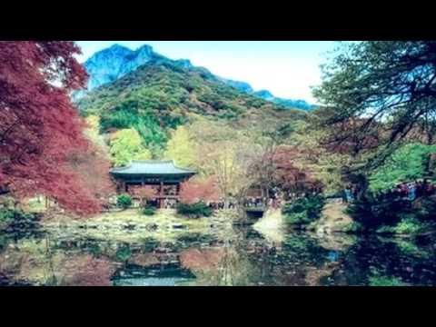 Невероятно красивые фото природы  Южной Кореи .