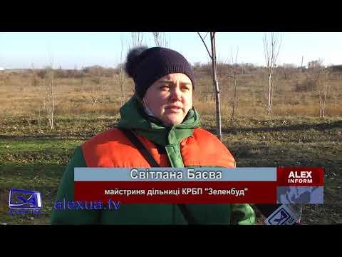 Телеканал ALEX UA - Новости: В Запоріжжі продовжують висаджувати дерева в грудні