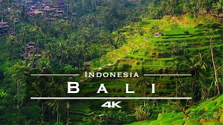 Bali, Indonesia 🇲🇨 - by drone [4K]