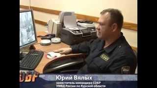 СОБР. Миссия специального назначения