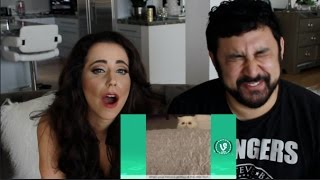Try Not To Laugh or Grin - Funny Animals Fails Vines Compilation 2016 REACTION!!!