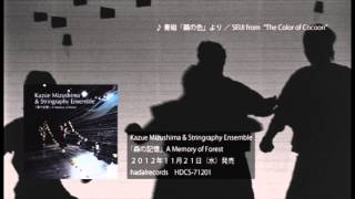 Kazue Mizushima & Stringraphy Ensemble 「森の記憶」A Memory of Forest ダイジェスト