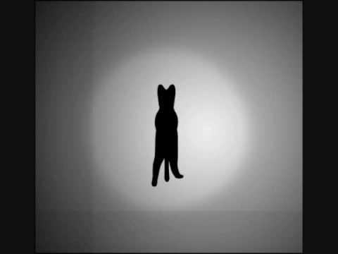Optical Cat Illusion