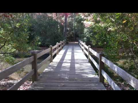 Walking trail - Callaway Gardens- FALL 2016
