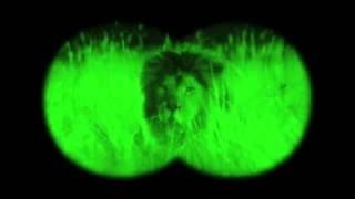 Funny GEICO Commercial Happier than an Antelope with Night Vision Goggles