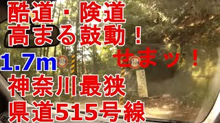 【酷道・険道・高まる鼓動!】神奈川県最狭県道515号線