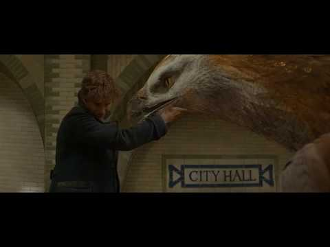 Fantastic Beast And Where To Find Them: Frank Obliviate Whole City Ending Scene 720p