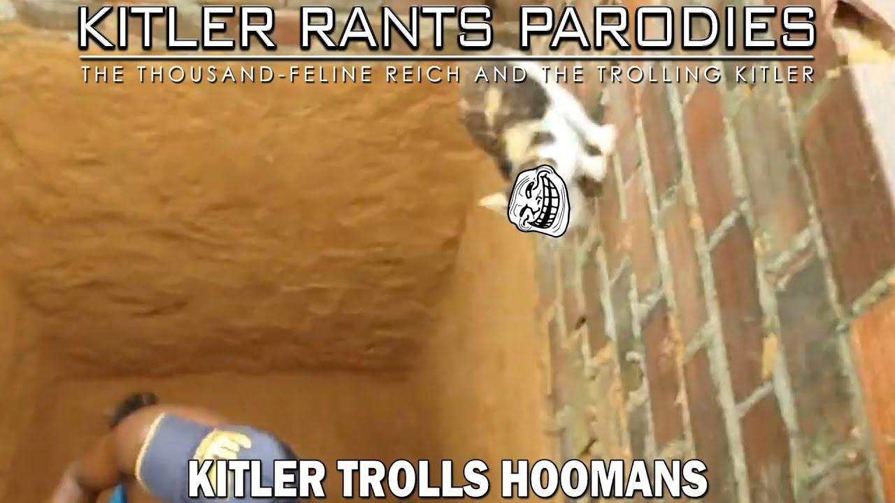 Kitler trolls hoomans