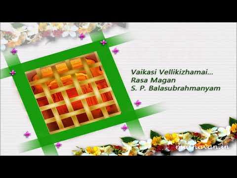 Rasa Magan | Vaikasi Vellikizhama | S. P. Balasubrahmanyam