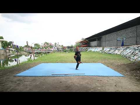 SD Negeri Yogyakarta Ekstrakurikuler Pencak Silat SD N Jaranan Quinta