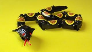 reino animal: cobra maluca crazy snake cobra de brinquedo snake toy bichos de juguete