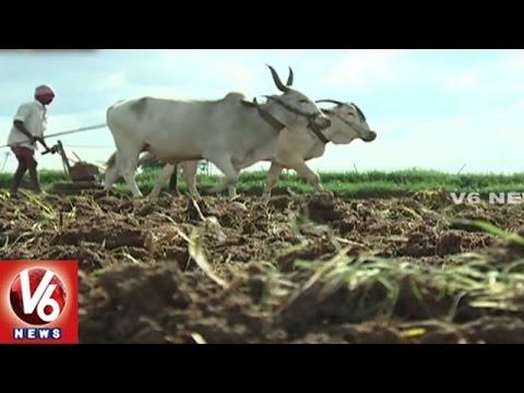 Success Story Of Subramanyam And Lakshmi Organic Farming | Sagubadi | V6 News