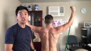 The two best SCAPULA drills to keep your shoulder pains away