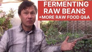 Fermenting Raw Beans + Your Raw Food Questions Answered Q&A Episode