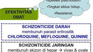 Farmakologi Ii: Pertemuan 4 (antimalaria)