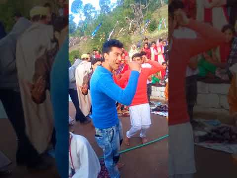 Dogri Song (Phari Dhamaka)