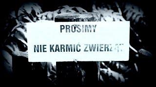 Teledysk: Sughar - Ćwicz, Licz, Myśl, Szanuj - feat. Mentozz (prod. RX) *Street VIDEO*