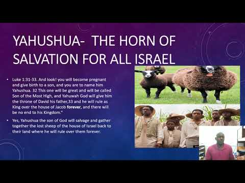 The means of salvation for the house of David and all true Israel