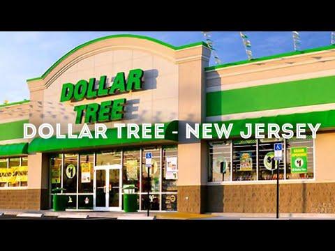 Dollar Tree Tour - New Jersey | Joana Brizola