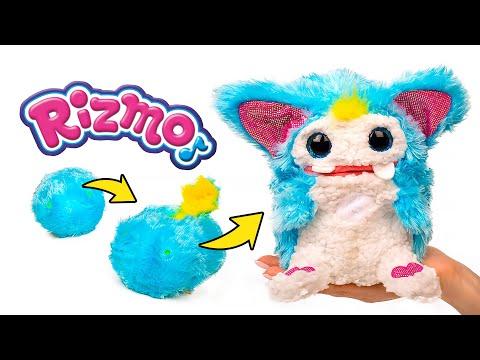 Rizmo - ¡El alienígena más encantador que hayas visto! 🛸🎶