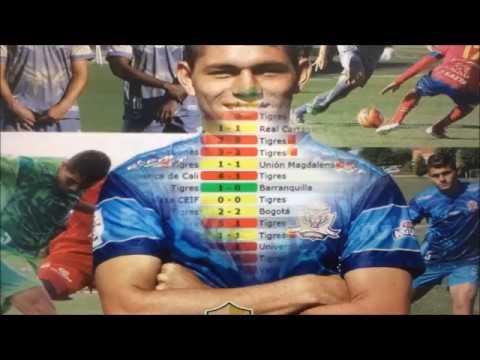 Nicolas Steven Roa Reyes Hoja de Vida futbol 2017 Resumen