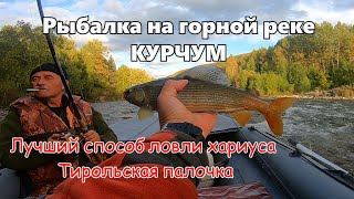 Косим хариуса с отцом на реке Курчум 2 Водометная лодка Выдра Рыбалка на Тирольку в ВКО