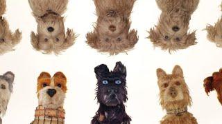 Dog nightmare —Jack Stauber (Isle of dogs)