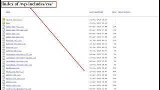 Prevent Directory Browsing On Your WordPress-Index of /wp-includes/css/-enabled on your site
