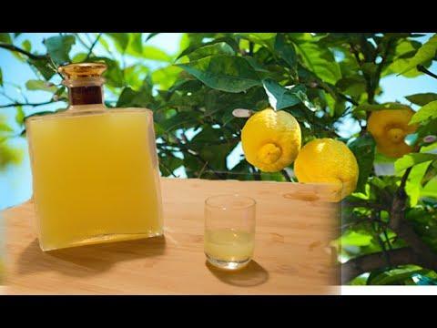 homemade-limoncello---italian-lemon-liqueur-recipe