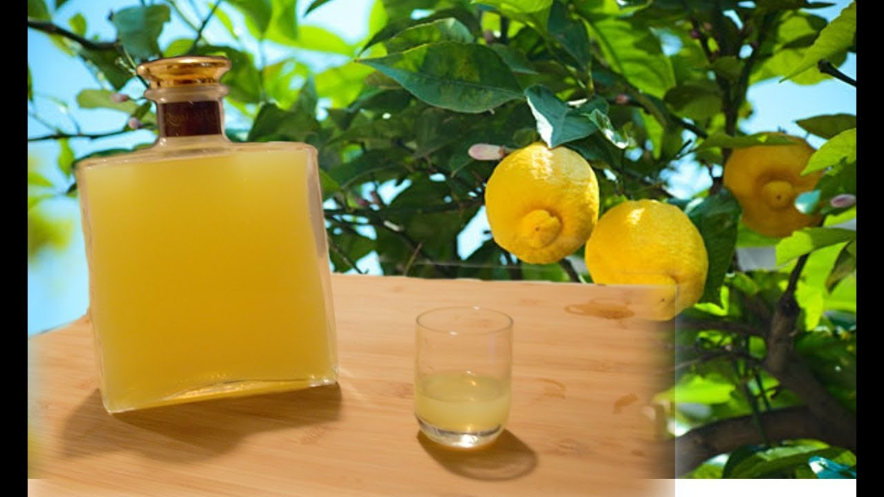 Homemade Limoncello Italian Lemon Liqueur Recipe Youtube